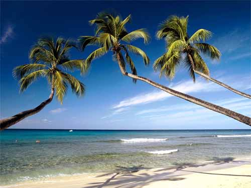 Luxury-Honeymoon-Vacation-at-Barbados-Best-Honeymoon-Destination-2