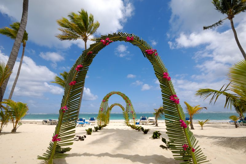 tropical arches