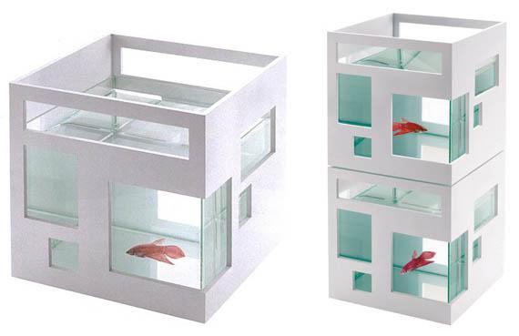Fish-Condo
