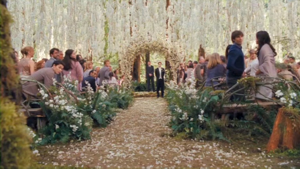 How To Have A Twilight Inspired Wedding The Wedding Planners Blog